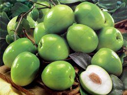 tropische taschen Rabatt Jujube Zizyphus mauritiana Samen Indische Jujube Baum samen Bonsai SELTENE tropische früchte samen für hausgarten 5 samen / tasche