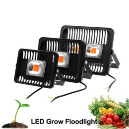 Wholesale Growing Vegetable Plants - LED Floodlight Waterproof IP65 30W 50W 100W Grow Flood Light For Outdoor Indoor Plants Vegetables Fruit Lamp Light