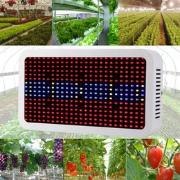 Wholesale Update Systems - Updated Full Spectrum Grow Light Kits 600W Led Grow Lights Flowering Plant and Hydroponics System Led Plant Lamps AC 85-265V