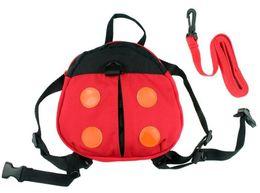 Wholesale Anti Lost Belt - 2 Styles Baby Kid Keeper Toddler Safety belt Backpack Bag Strap Rein Baby ladybug Anti-lost Walking Wings Bags Backpacks