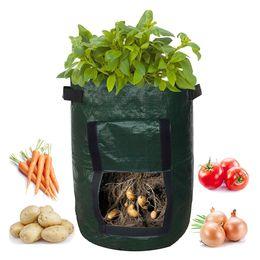 Plant Grow Bag DIY Potate Grow Planter PE Cloth Pomodoro Planting Bag Bag Addensare Garden Pot Forniture da giardino per la coltivazione da