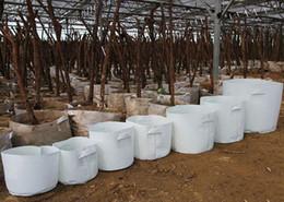 2019 vasetti da giardino in ceramica all'ingrosso 10 Size Opzione Tessuto non tessuto Riutilizzabile Soft-Sided altamente traspirante Grow Pots Planting Bag con manici Plant Bag Large Flower Planter