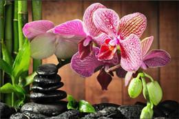Bordado orquídea on-line-Diamante bordado flor rosa orquídea diy pintura diamante kit ponto cruz resina quadrado completo mosaico de diamantes de decoração para casa presente sq0086