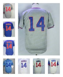 Wholesale 1969 baseball - Men's Chicago #14 Ernie Banks Retired 1968 1969 M&N Jersey Stitched