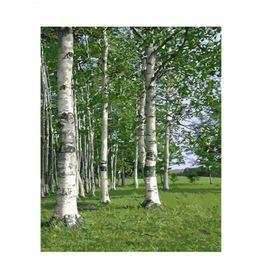 Dipinto frameless foresta di betulla di paesaggio by numbers paesaggio moderno immagine di arte della parete dai numeri per la decorazione della casa goccia da yiwu star fornitori