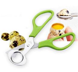 Wholesale Bird Opener - Pigeon Quail Egg Scissor Bird Cutter Opener Kitchen Tool Clipper Sale 500pcs
