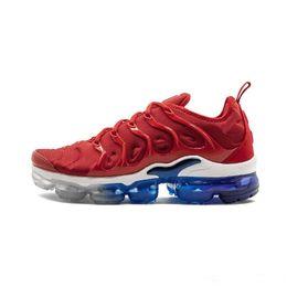 Nike Air Max Vapormax Plus TN Chaussures de Course Pour Hommes USA Raisin Rouge Violet Bleu Tropical Coucher De Soleil Triple Noir Blanc Femmes