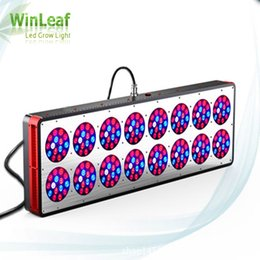 Wholesale Apollo Grow - Apollo 16 Led Grow Lights Lamp for Plants 720W Full Spectrum Indoor Greenhouse Tent Hydroponics Medical LED Grow Light for Plant