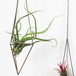 Wholesale Holders Wrought Iron - plant holder Freestanding Hanging Planters Geometric Himmeli Swing Wrought Iron Tillandsia Air Plants Holder Triangular Shaped Metal Rack