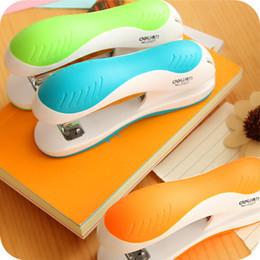 Material panda on-line-Mini Panda StaplStapler para No. 12 Ster Set Kawaii Panda Dos Desenhos Animados Pasta De Papel Dentro de 1000 pcs Grampos Material Escolar Escritório Material Escolar