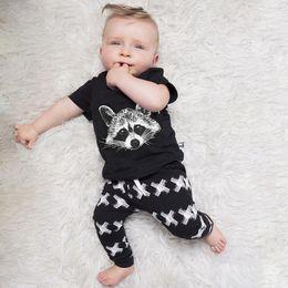 INS-Babyklage scherzt Markentrainingsanzugjungen das Fuchshauptkurzschluss sleeved T-Shirt + pants 2 Sätze geben Verschiffen frei neuer Art und Weisefrühlingsherbst des heißen Verkaufs. von Fabrikanten