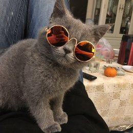 Canada 2019 gros lunettes de soleil pour animaux de compagnie de mode chat chien lunettes ornement en verre lunettes de couleur différente pour animal Offre
