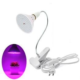 Wholesale plug grow lights - Full Spectrum LED Grow Light with 360 Degrees Flexible Lamp Gooseneck Holder Clip Indoor Desktop Light US EU plug