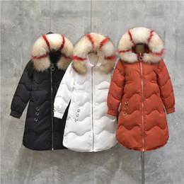 2019 color de pelo largo coreano La versión coreana 2018 de la nueva chaqueta de abajo, larga y gruesa de color, gran cuello de pelo, delgado abrigo de invierno, pato blanco abajo color de pelo largo coreano baratos