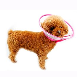 Wholesale Bit Dog Collar - Pet Dog Anti-bite Protection Elizabeth Cover Collars Prevent Dog-biting Neck Pet Dog Collar Grooming Protective Cover