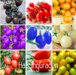 Wholesale Planting Cherry Seeds - New Fresh Seeds 7 Kinds Of Cherry Tomatoes Seed Delicious Fruits Seed Vegetables Potted Bonsai Potted Plant Tomatoes Seeds 200 PCS bag