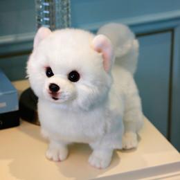 Cachorros brancos on-line-Dorimytrader Qualidade Beleza Cão Branco Pomeranian Brinquedo De Pelúcia Recheado Bonito Pet Animais Cães Boneca Caçoa o Presente 28 cm X 12 cm X 22 cm DY50058
