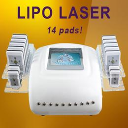 Argentina Liposucción del cuerpo del laser del laser que adelgaza la máquina Láser de la gordura que reduce la máquina del laser del laser del Lipo de la longitud de onda doble Suministro
