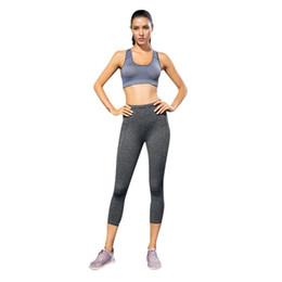ada4e11a7d Women Seamless Sports Bras Wire Free Padded Crop Top Fitness Vest Tank Push  up Jogging Yoga Sport Bra sports bra plus size