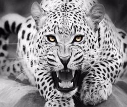 tela di olio astratta piano Sconti animal canvas painting Wall art Immagine per Living Room Art poster Decorazione Immagine No Frame morden print wall Tiger