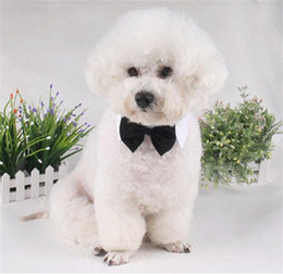 Wholesale wholesale grooms wear - Adjustable Dogs Cats Tie Pet Lovely Adorable Sweetie Grooming Neckties Dog Fashion Collar Solid Print Neck Wear Pet Dog Supplies 4 71jz Y