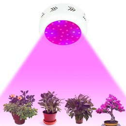 Spectre Led Promotion 2019 Ufo Complet FullVente Light 8nvmwN0yO