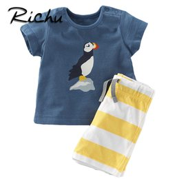 Wholesale china old - Richu 100% cotton children clothes china kids boys clothes 6 years old summer short clothing sets classic suit for boy toddler child suits