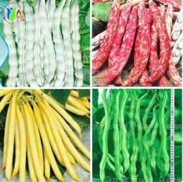 10 шт./пакет семена фасоли здоровые семена овощей Phaseolus Vulgaris завод, семена зеленой фасоли, естественный рост, завод для дома сад от