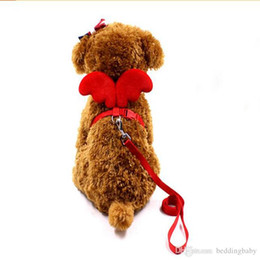 harnais de chien à ailes Promotion En gros 5pics harnais ange ailes de poitrine sangles traction corde corde pet petit chien laisses belles animaux fournitures colliers de chien multi couleurs