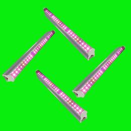 ha portato i vasi illuminati Sconti T5 Tube SMD2835 led coltiva le luci per le piante Led Grow Light Tube Phyto Lamp Pot Hydroponics Tube 30/45/60 cm + Clamp