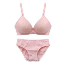 3ebc91eacc Sexy Bra Set Seamless Push Up Bras and Panty Set Underwear Women lingerie  conjunto