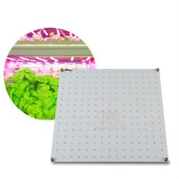 Wholesale lead farm - High Quality 630nm 660nm Blue LED Grow Light Led Grow Light Suppliers Diy Led Panel For Indoor Farming Grow Tent