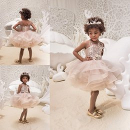 d8432abae2ca Light Pink Lace Appliques Sheer Neck Flower Girls Dresses Puffy Skirt  Organza Communion Gowns Feather Kids Pageant Dress