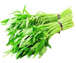 Sega dell'acqua online-Vendita calda 30 grani / sacchetto di semi di ortaggi mini semi di spinaci d'acqua sono facili da coltivare Home Furnishing sane verdure biologiche spinaci vedere