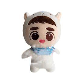 Wholesale Kpop Anime - Have Gift 25cm Movie EXO D O Plush Doh Kyungsoo Baby KPOP Plush Dolls Soft Fans Anime Toy Handmade
