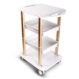 2019 pulsera de anillo de dedo indio Elitzia ETTRO5 Beauty Salon Furniture Trolley Spa Styling Pedestal Rolling Cart Dos estantes Abs Aluminio