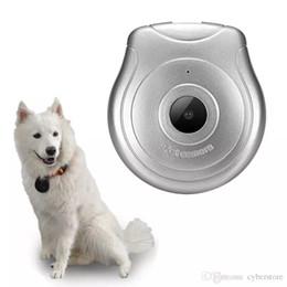 Câmeras de tv on-line-Nova Câmera IP Sem Fio Pet Cam HD 720 P Câmera Para Monitor de Animais de Estimação Anti Perdido para Detecção de Monitor de Animais de Estimação Gravação De Vídeo Dog TV