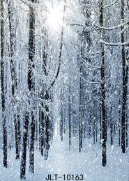 2019 cámaras del cielo Fondo fotográfico congelado nieve blanca fotografía de la selva telones de fondo fondo fotomontaje glitter para estudio fotográfico tela de vinilo