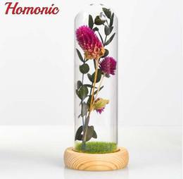 Fiori di vetro artificiale online-Piante artificiali Fiore secco cupola di vetro per la decorazione della casa bar caffetteria Micro paesaggio regalo di compleanno di San Valentino