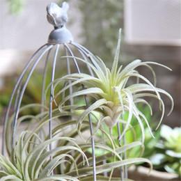 LIN MAN Nuovo arrivo Micro-paesaggio Air Ananas Grass Piante artificiali Pianta succulenta DIY Home Garden Decor cheap plants for landscaping da piante per il paesaggio fornitori