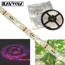 Wholesale Led Aquarium Strips - RAYWAY 5050 SMD Flexible plants led grow Light Strip 4:1 4 Red 1 Blue Aquarium Greenhouse Hydroponic Plant Growing Lamp 60led m