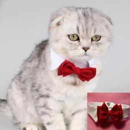 2019 forniture di bowtie Pet Supplies Bowtie Collar Pet regolabile Collo Cravatta Gatti Cane Accessori da sposa Cani Papillon Collare Decorazione natalizia Grooming forniture di bowtie economici