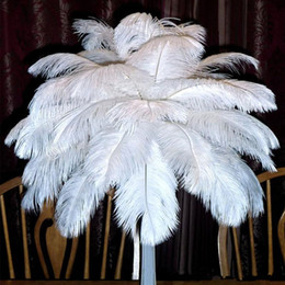 Wholesale Mascot Halloween - Beautiful Marabou Feathers For DIY Bridal Wedding Crafts Millinery Card Decorate Wedding Ostrich Feathers Wedding Decoration Supplies