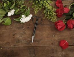 """Débutant Bonsaï outils de ciseaux à long manche Ciseaux 205mm (8 """") en acier au carbone Qualité standard pour les débutants Bonsaï zzh ? partir de fabricateur"""