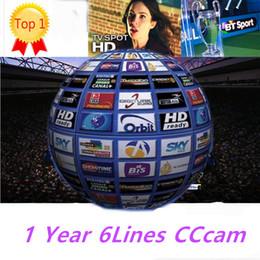 V7 tv online-cccam cline für 1 jahr mit 6 clines für europa italia portugal holland gut für freesat v7 v8 superangebot reseller-bedienfeld