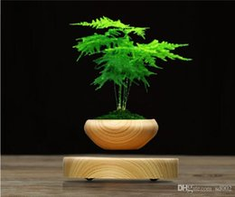 bonsai d'aria Sconti LED Levitating Air Flower Pot Novità Anti Computer Radiation Planters Legno magnetico Bonsai galleggianti Per Desktop Decorations186 2sq ZZ