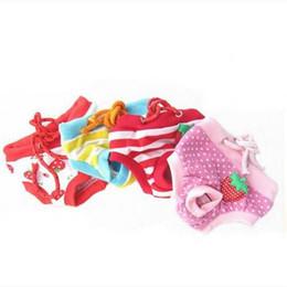 2019 abrigos fbi Moda Verano Lindo Perro Mascota Femenina Pantalones de Higiene Menstrual Estrus Pet supplies perro suministros perro suéter