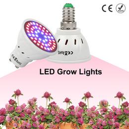 2019 maior par led grow light Full Spectrum Crescer Luz E27 E14 LEVOU Crescer Lâmpada GU10 MR16 48 60 80 leds para Hidroponia Flores Plantas Vegetais Lâmpadas