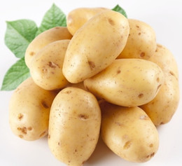 Wholesale Potato Free - 30pcs hot sale POTATO seeds giant chinese sweet vegetable seeds bonsai plant food delicious home & garden free shipping