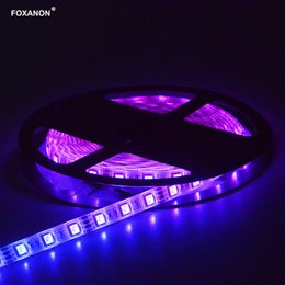 Neon lighting for home Bar Neon Lights For Home Promo Codes Foxanon Smd 5050 Led Strip Waterproof 5m 60leds Battle Born Hydroponics Neon Lights For Home Coupons Promo Codes Deals 2019 Get Cheap